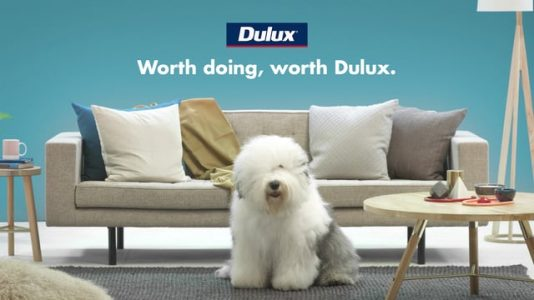 Dulux Colour View